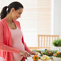 Ernährungswissen Schwangerschaft