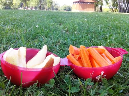 Apfel- und Karottensticks auf einer Wiese